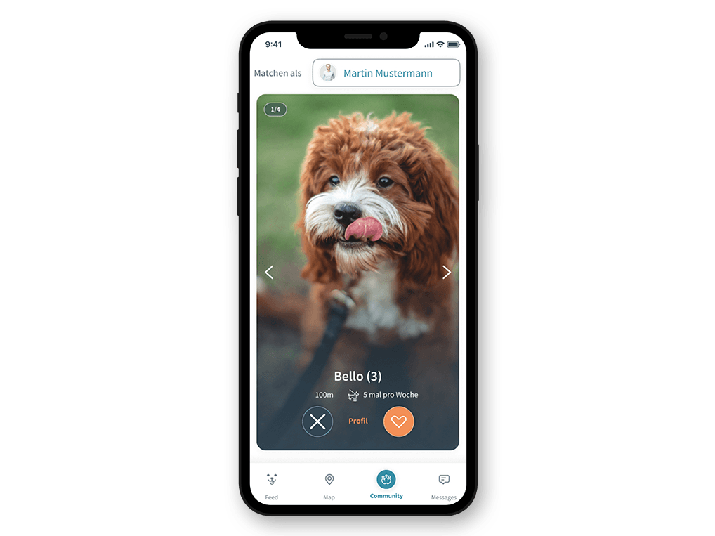 Patzo Hunde App: Hundeprofil swipen im Matching